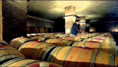 Video: Südtiroler Qualitätsprodukte und ihre Gütesiegel