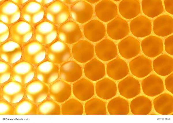 Was man Früher noch wusste: Honig, Propolis und Geleé Royal natürliches Heilmittel Teil 2