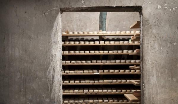bunker-752x440