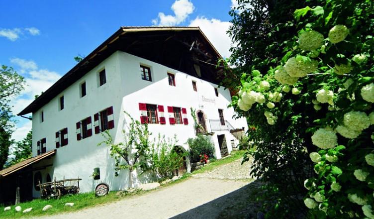 Törggelen, meine Empfehlung: Wirtshaus Thurnerhof
