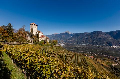 Was sollte man über Südtirol und den Wein wissen...