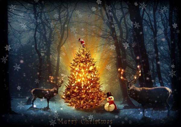 christmas-1914424_1280