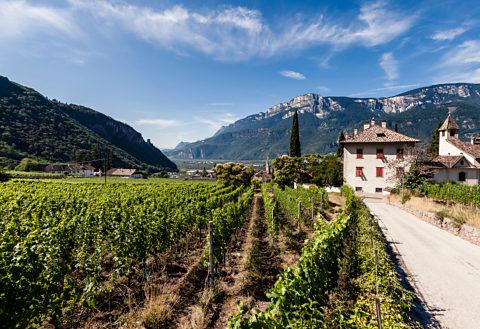Crashkurs Wein 12: Terroir, viel mehr als Boden