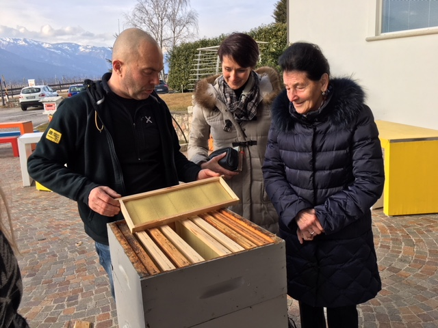 Was man Früher noch wusste:  Honig, Propolis und Geleé Royal natürliches Heilmittel Teil 1
