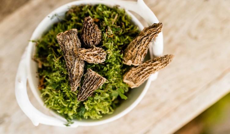 Zubereitung und Mengenangaben: Getrocknete Pilze