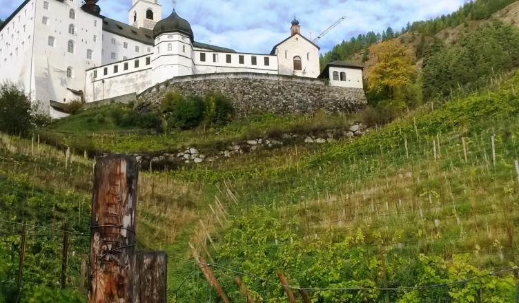 """Über die """"Piwi Weine aus Laatsch und Marienberg""""; dem Herrgott ein Stückchen näher!"""