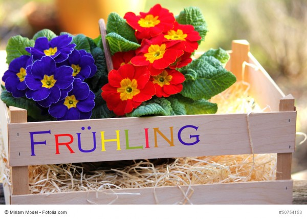 Zitat: Frühlingszauber