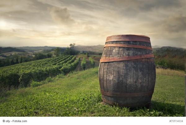 Die Südtiroler Weinernte 2017