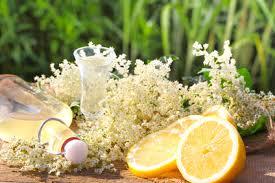 Rezept: Holunderblütensaft - Hollerblütensaft